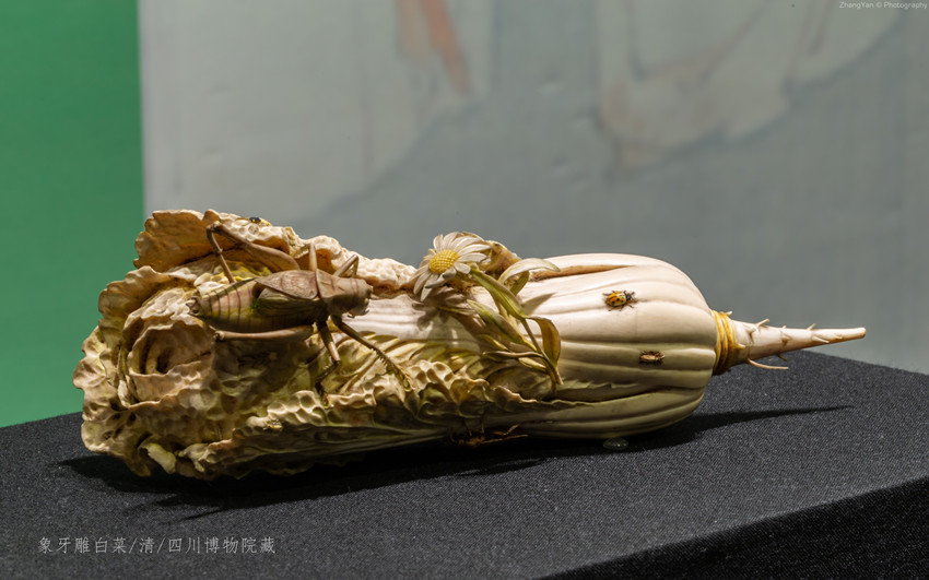 象牙雕白菜(清)_副本.jpg